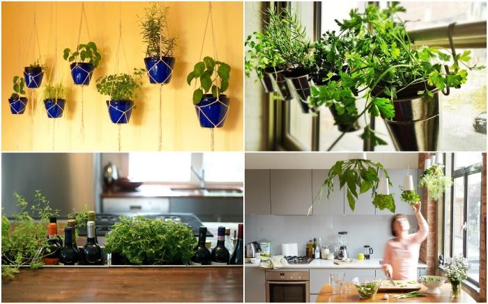Идеи создания небольшого сада в квартире.