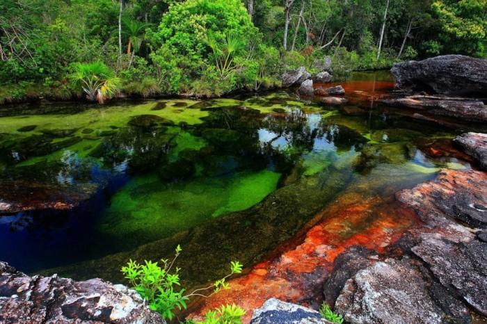 Кристальные воды реки Каньо-Кристалес.