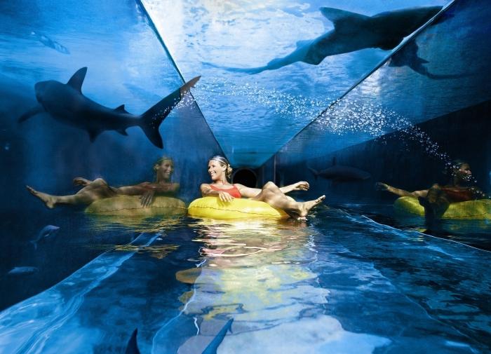 Великолепный аквапарк с живыми морскими обитателями.