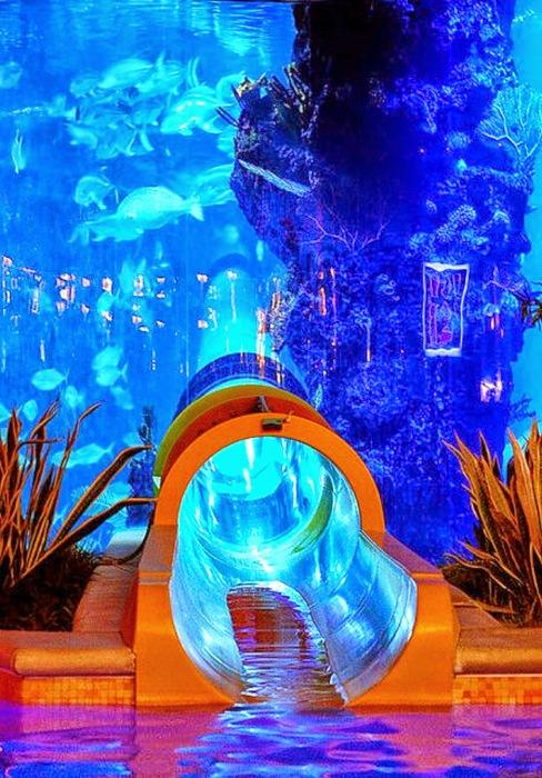Роскошный аквапарк.