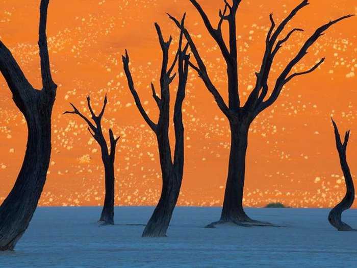 Красные пески пустыни Намиб.