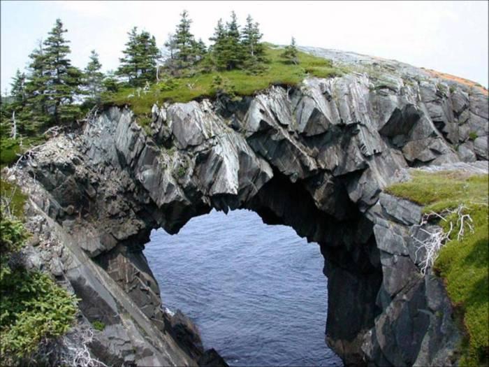 Уникальная арка, созданная самой природой.
