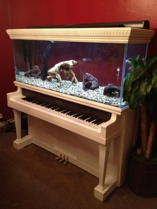 Необыкновенный и уникальный аквариум в старом пианино.