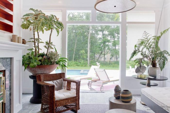Растения улучшают качество воздуха, которым мы дышим, а также делают комнаты более живыми.