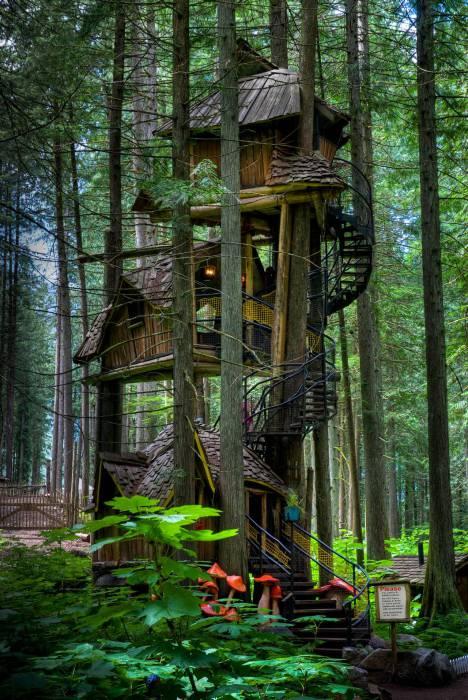 Замечательный трехэтажный дом на дереве.