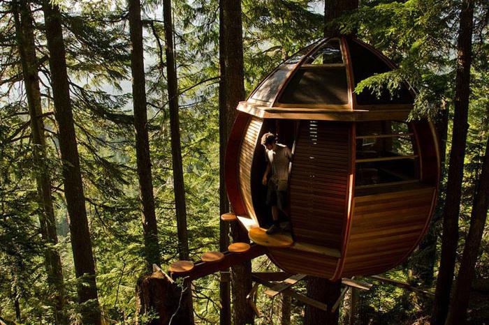 Современный и комфортный лофт на дереве.