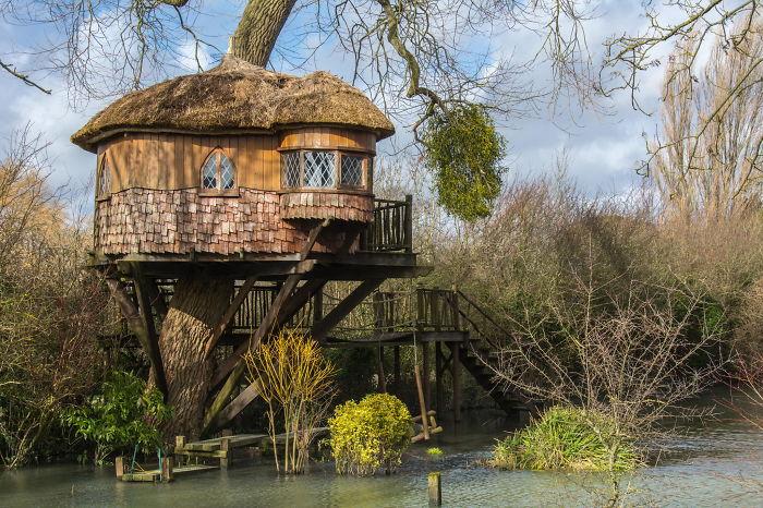 15 самых удивительных домиков на дереве.