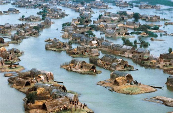 Месопотамские болота до того, как Саддам Хуссейн осушил их.