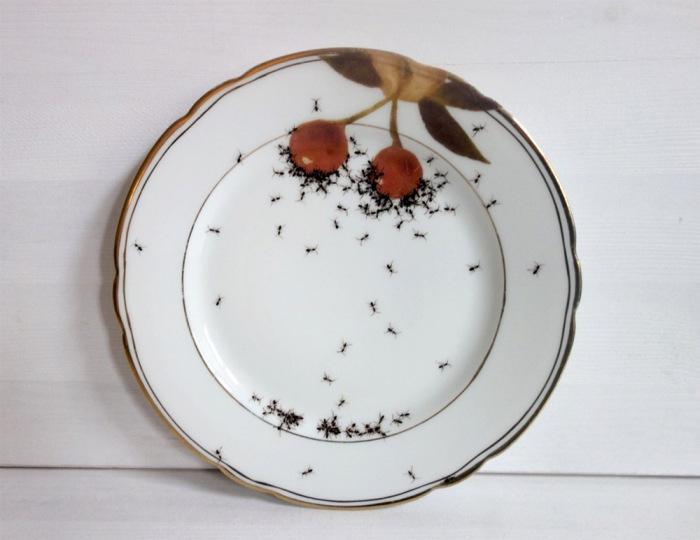 Нашествие муравьев.