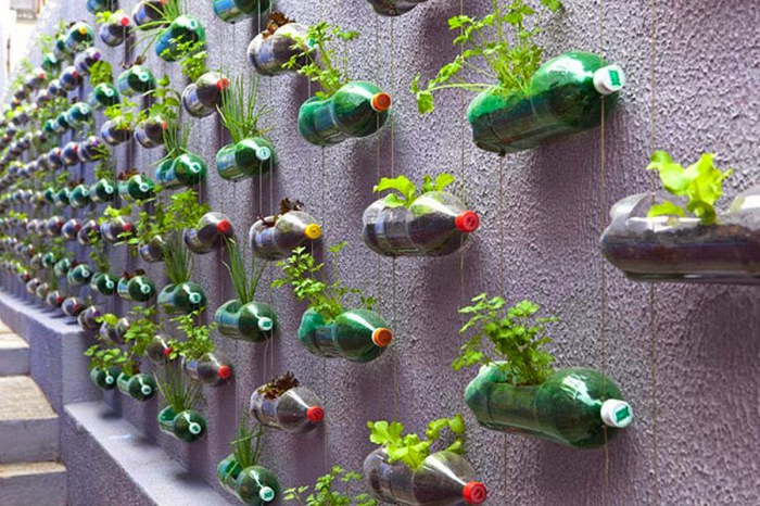 Вертикальный сад для <strong>подставка для ручек из бутылки своими руками</strong> оживления интерьера.