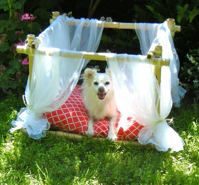 Очаровательный шатер для любимого животного.