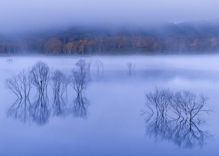 Туманное утро от Hiroshi Tanita.