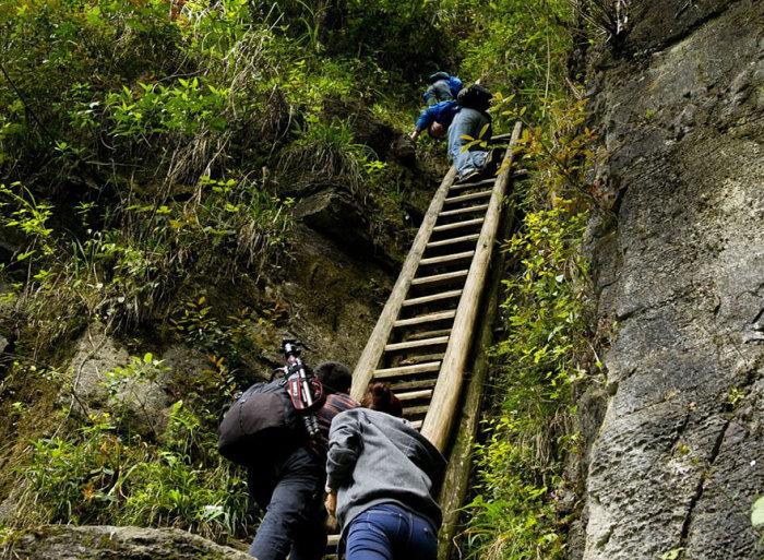 Школьники взбираются по шаткой лестнице без любой подстраховки.