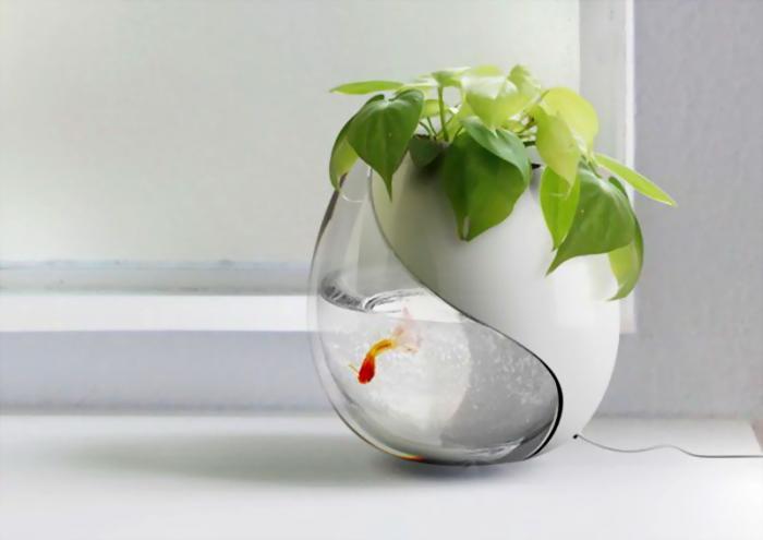 Два в одном: цветочный горшок и аквариум.