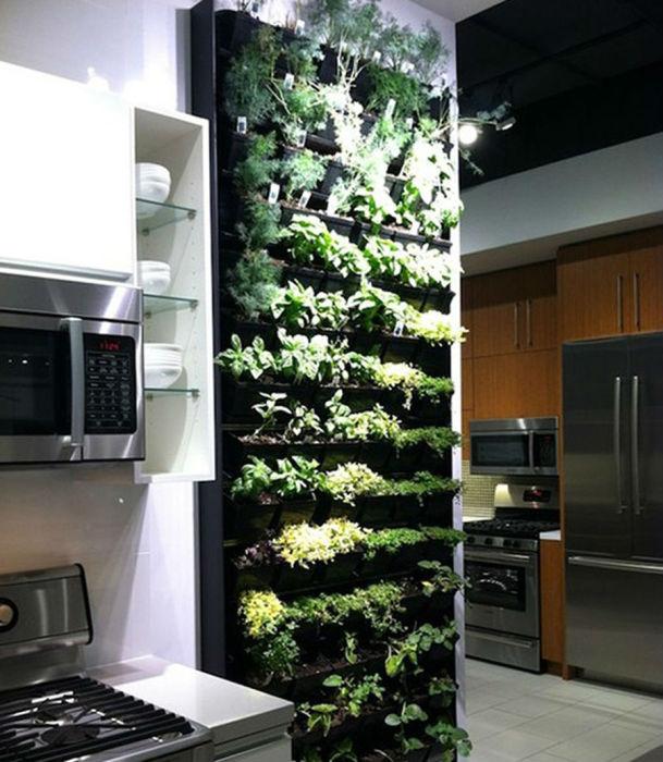 Полки для выращивания свежей зелени