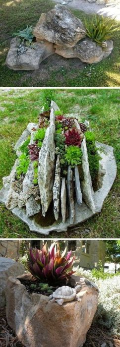 Камни - замечательное место для небольшого цветущего садика.