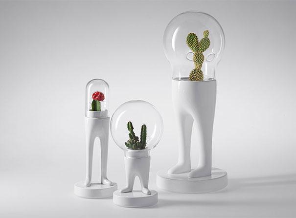 Нашествие инопланетных домашних растений.