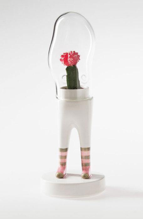 Растение в сапожках.