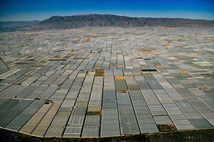 Полностью покрытая теплицами земля в Испании.