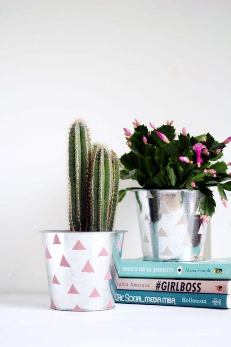 Подруга, которая в восторге от различных растений будет вне себя от радости, получив в подарок маленького зеленого домашнего питомца. Суккуленты для этой роли подойдут как не лучше кстати.