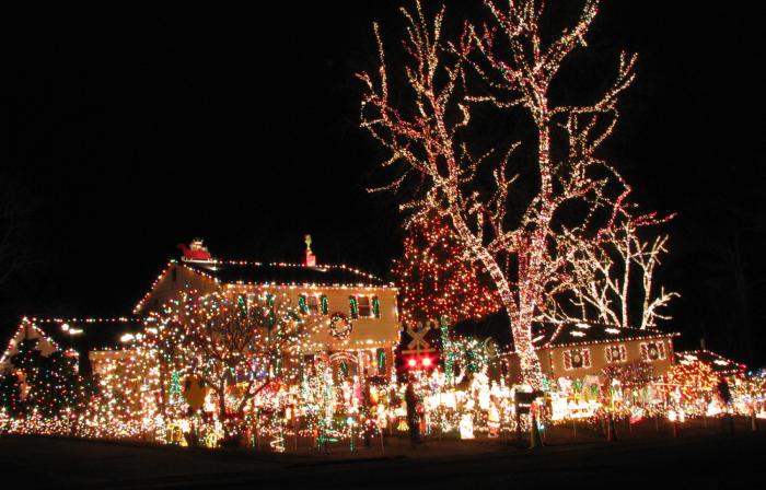 Дерево, полностью увешано новогодними гирляндами.