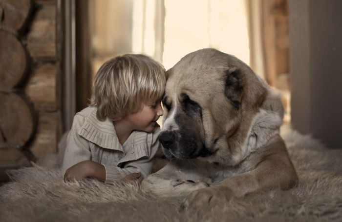 Маленький ребенок и собака.