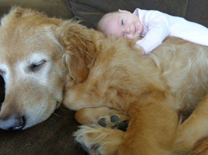 Радость ребенка, обнимающего собаку.