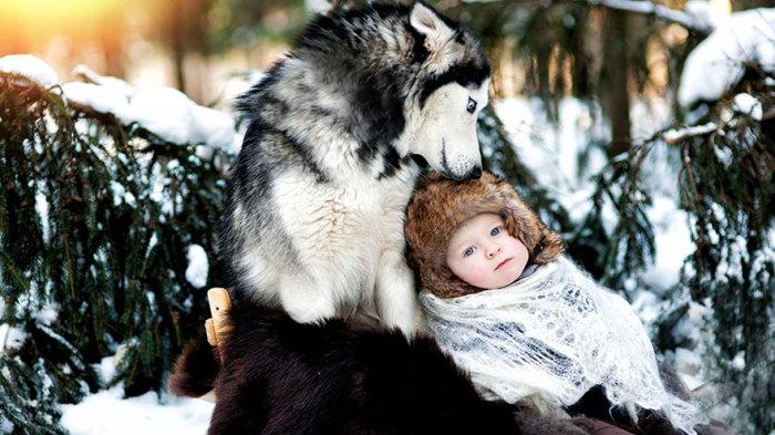 Настоящее взаимопонимание между ребенком и собакой.