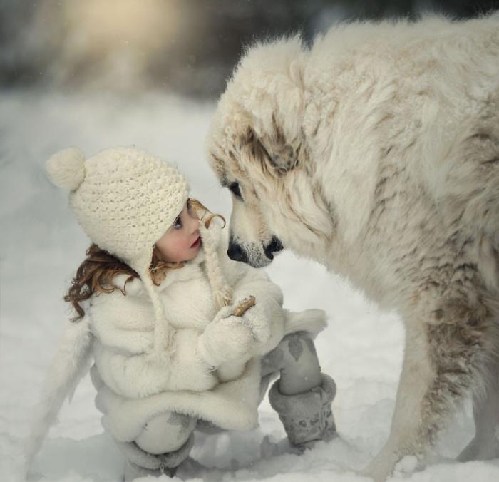 Зимняя фотосессия ребенка и собаки.