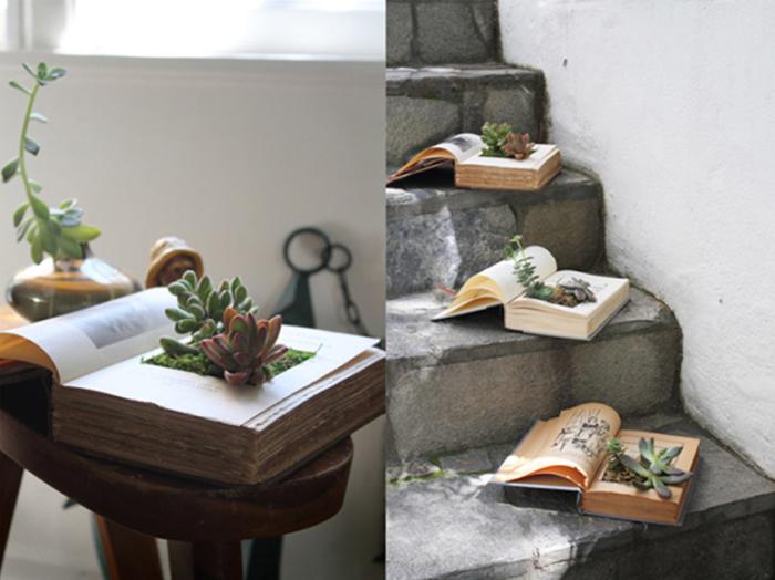 Старые книги в качестве места для рассадки домашних растений.