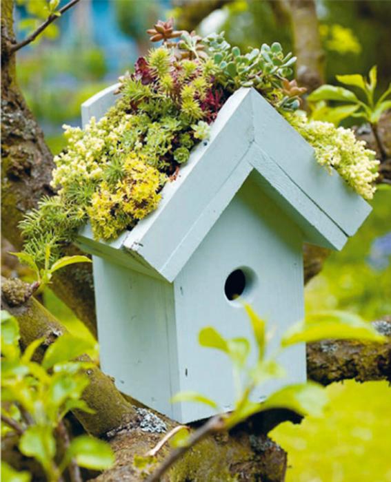 Очаровательный скворечник с садом на крыше.