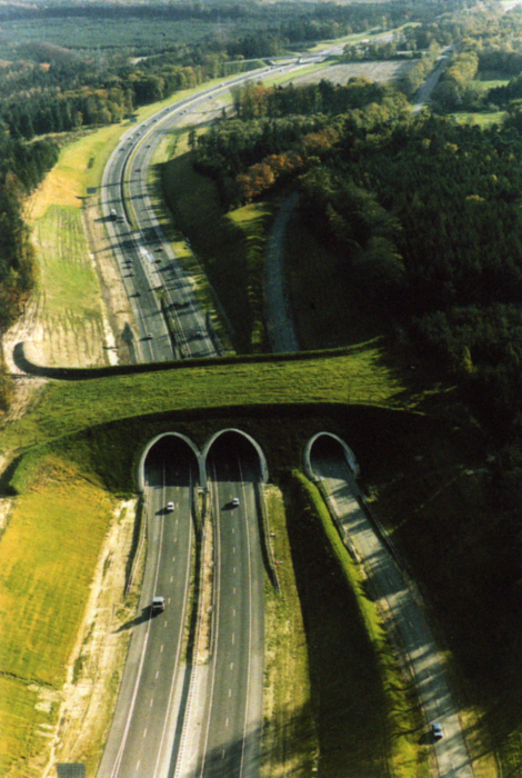 Прекрасный мост вголландской провинции.