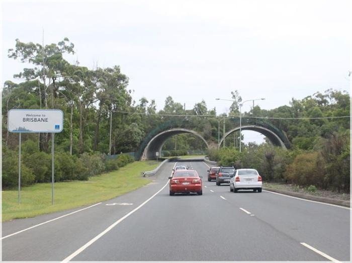 Арочный двойной мост дляживотных вАвстралии.