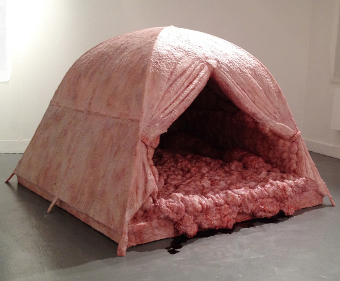 Странная и отталкивающая палатка.