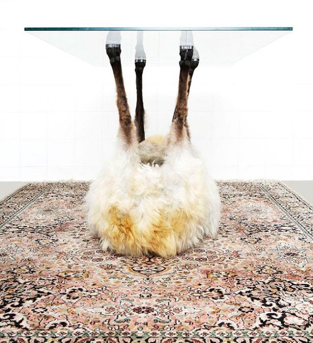 Обеденный стол, который держится на перевернутом козьем туловище.