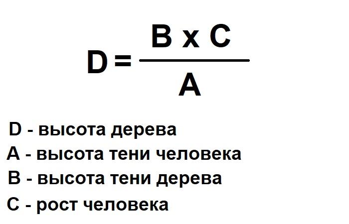 Подсчитываем по формуле. ¦Фото: novate.ru.