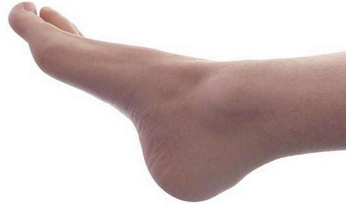 Ноги состоят из 52 костей.