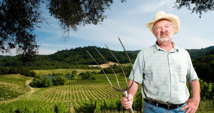 Вилы это главный инструмент фермера.