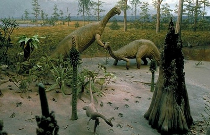 Первые динозавры были маленькими и легкими.