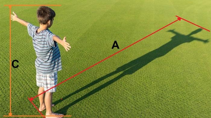 А также высота человека и высота его тени в это же время. ¦Фото: novate.ru.