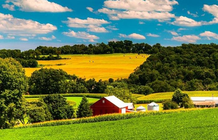 Альтернативный способ жизни: органические фермы.