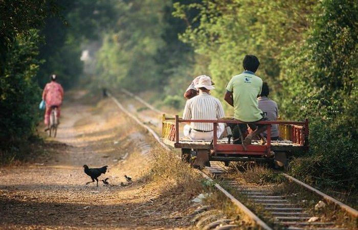 Завораживают и пугают: бамбуковые поезда.
