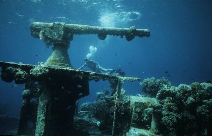 Крупнейшее морское кладбище.