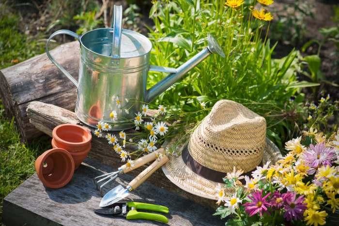 Лучшие штуковины для сада и огорода за 2016 год.
