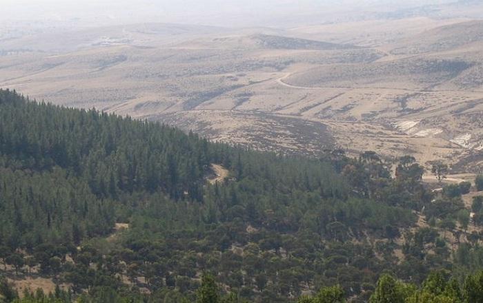 Гора Хеврон, Палестина.