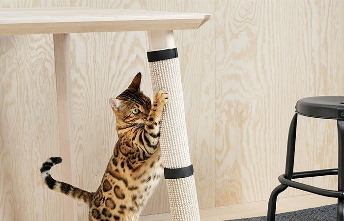 Защити любимую мебель от кота.