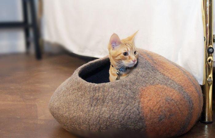 В такой кот будет в полной безопасности.