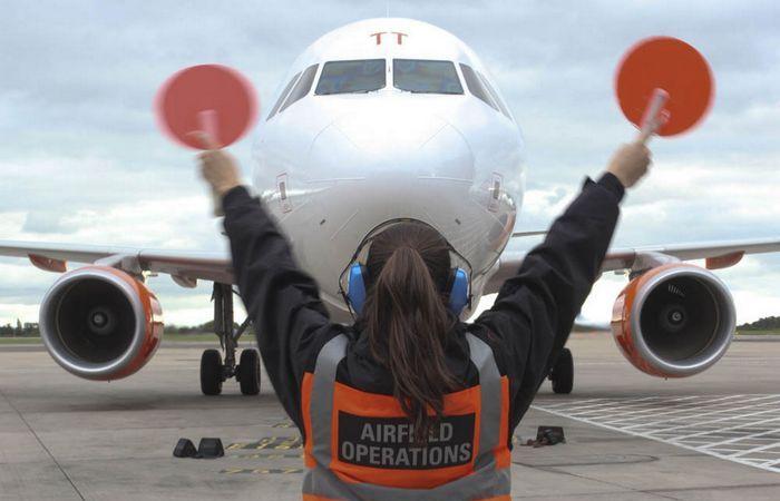 Самолётные безбилетники - безумцы или герои.