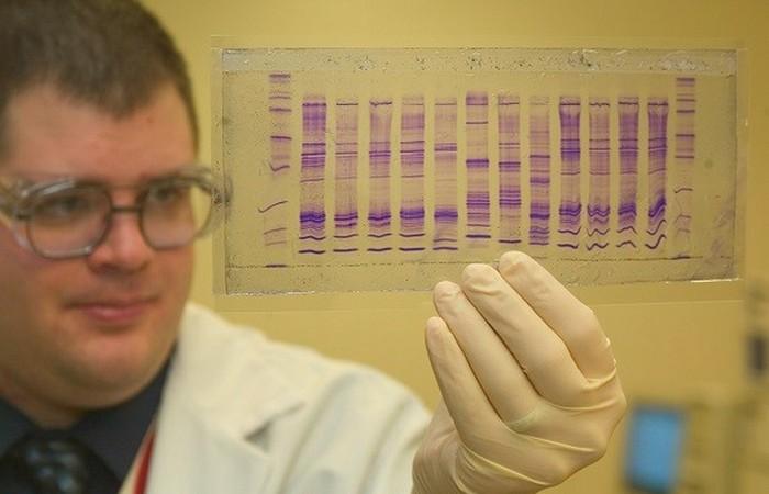 Тестирование способности производить меланин.