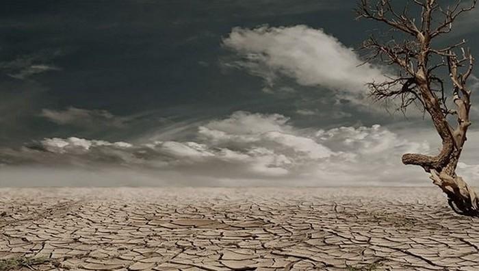Обратить внимание: опустынивание.